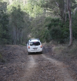 One Tree Hill 4WD access road. Take care on the unsealed roads. Photo: Cathy Gatley, Queensland Government.