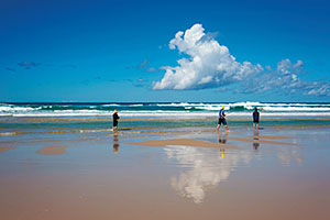 Sandy beach, Fraser Island. © Tourism and Events Queensland.