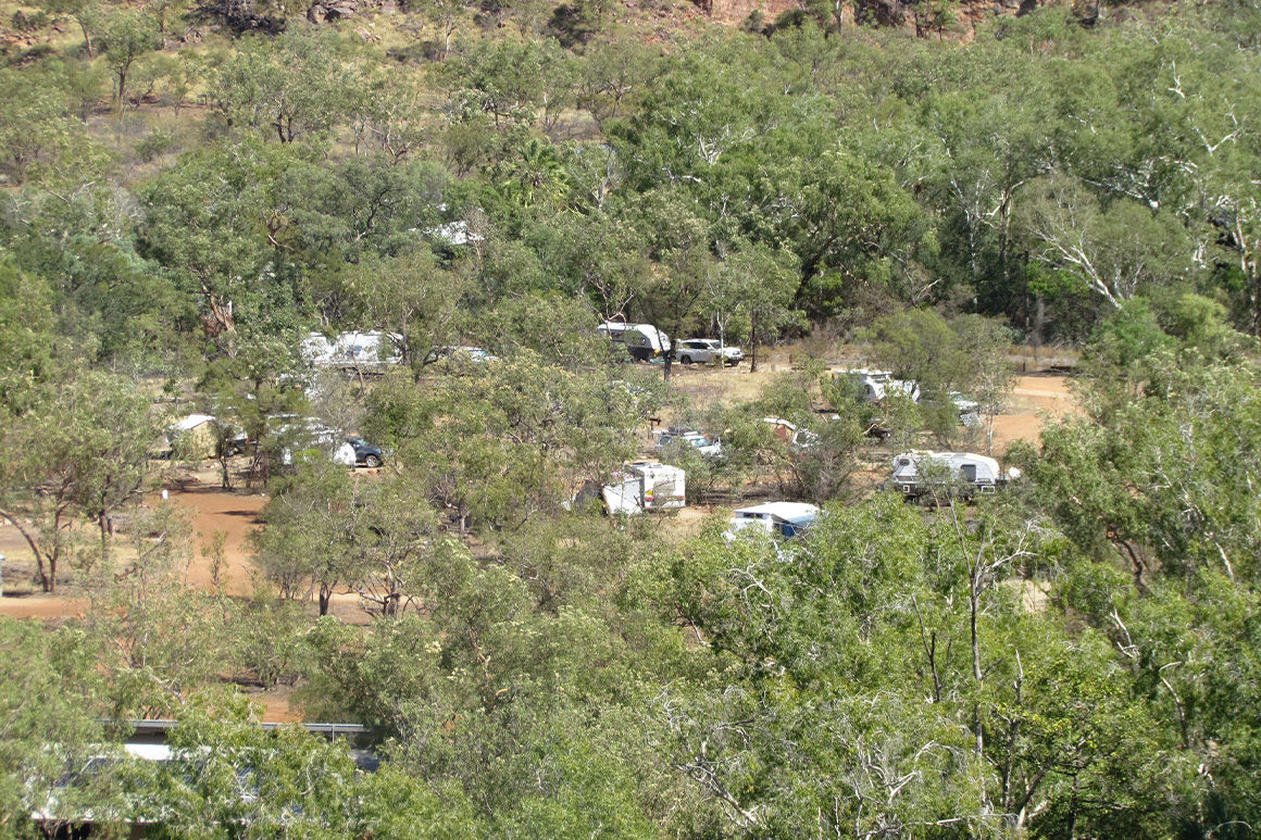 Campervans and tents are dotted amongst trees in the gorge with a backdrop of red sandstone.