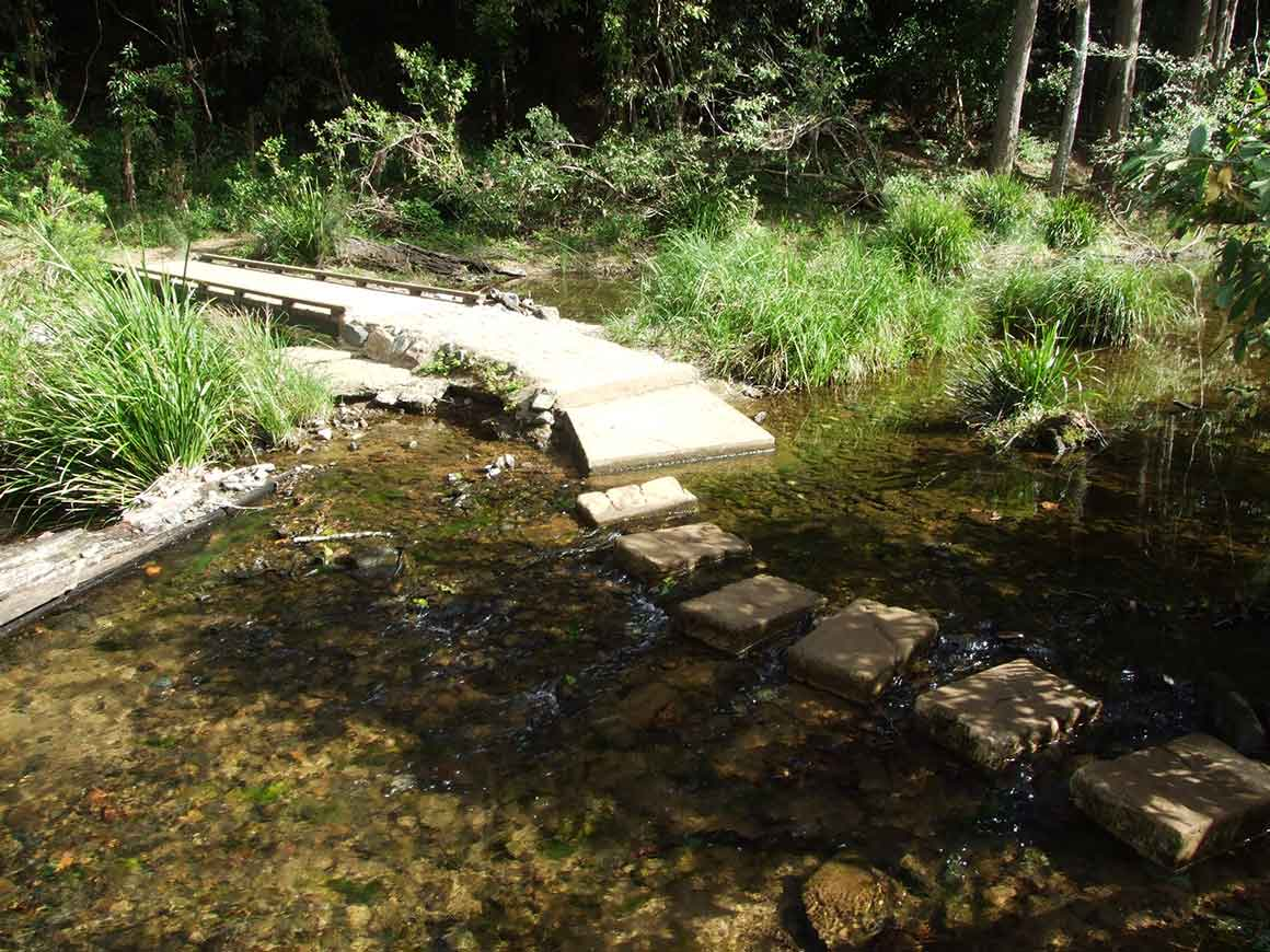 Stepping stones through shallow water provide a creek crossing along the track.