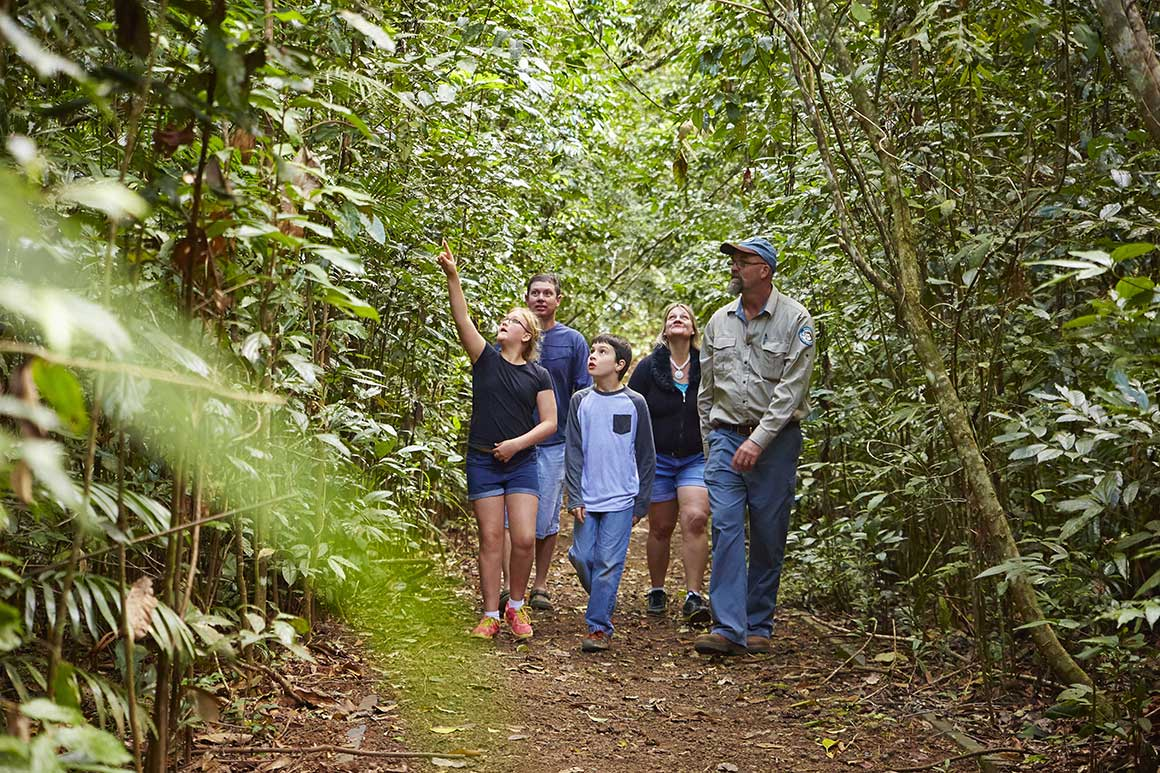 < group of children and adults walk along track through green lush rainforest, pointing and looking around, excitedly