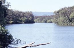 Coomera Creek