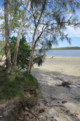 Enjoy your own sandy shore at Hedleys camping area.