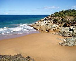 The headland, Joseph Banks Conservation Park. Photo: Queensland Government