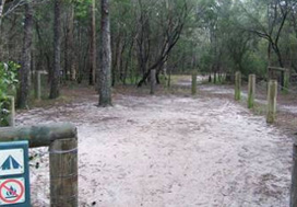 Harrys camping area showing river access camp sites, which offer jetty and canoe landing facilities.