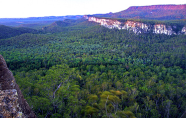 The Carnarvon Gorge visitor area, seen here from Boolimba Bluff, is located beneath a canopy of gums and fan palms at the mouth of the gorge. Photo Robert Ashdown © Queensland Government