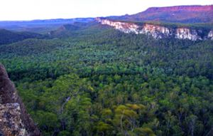 Image of the Carnarvon Gorge visitor area, seen here from Boolimba Bluff, is located beneath a canopy of gums and fan palms at the mouth of the gorge.