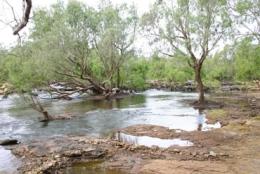 The Normanby River at Kalpowar Crossing.