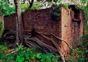 Remnants of the quarantine station, Platypus Bluff.