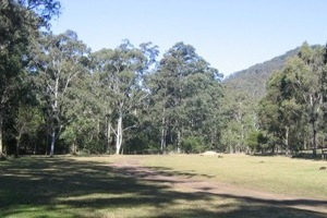 Poplar Flat camping area. Photo: Queensland Government.