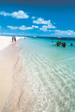 Go diving, snorkelling or just enjoy the beach at Michaelmas Cay, Queensland. Photo: Peter Lik, courtesy of Tourism Queensland.