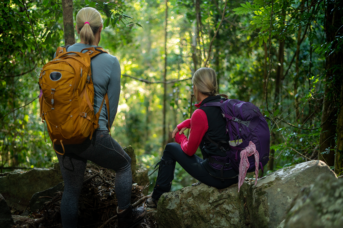 Two female hikers in cold weather fear are pausing to take in the views of the rainforest ahead of them.