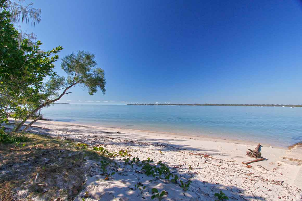 Bright green coastal trees cast dappled shade over white sand, lapped in the distance by bright blue ocean waters under a matching blue sky.