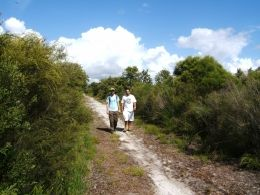 Take a peaceful walk along one of the management trails that border the park. Photo: Anthony Dillon, Queensland Government.