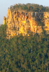 The sandstone cliffs of Cania Gorge reach heights of 70m. Always take great care when walking at Cania Gorge, and supervise children closely. Photo: Robert Ashdown, Queensland Government.