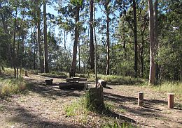 Image of Middle Kobble bush camp. Photo: Diana Hughes, Queensland Government.