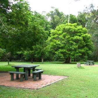 Water Creek Park day-use area. Photo: Matt Kayes, Queensland Government.