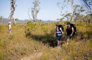 Two people bushwalking through a grassy area, carrying backpacks.