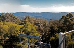 Mount Allan fire tower provides expansive 360 degree views. Photo: Robert Ashdown, Queensland Government.