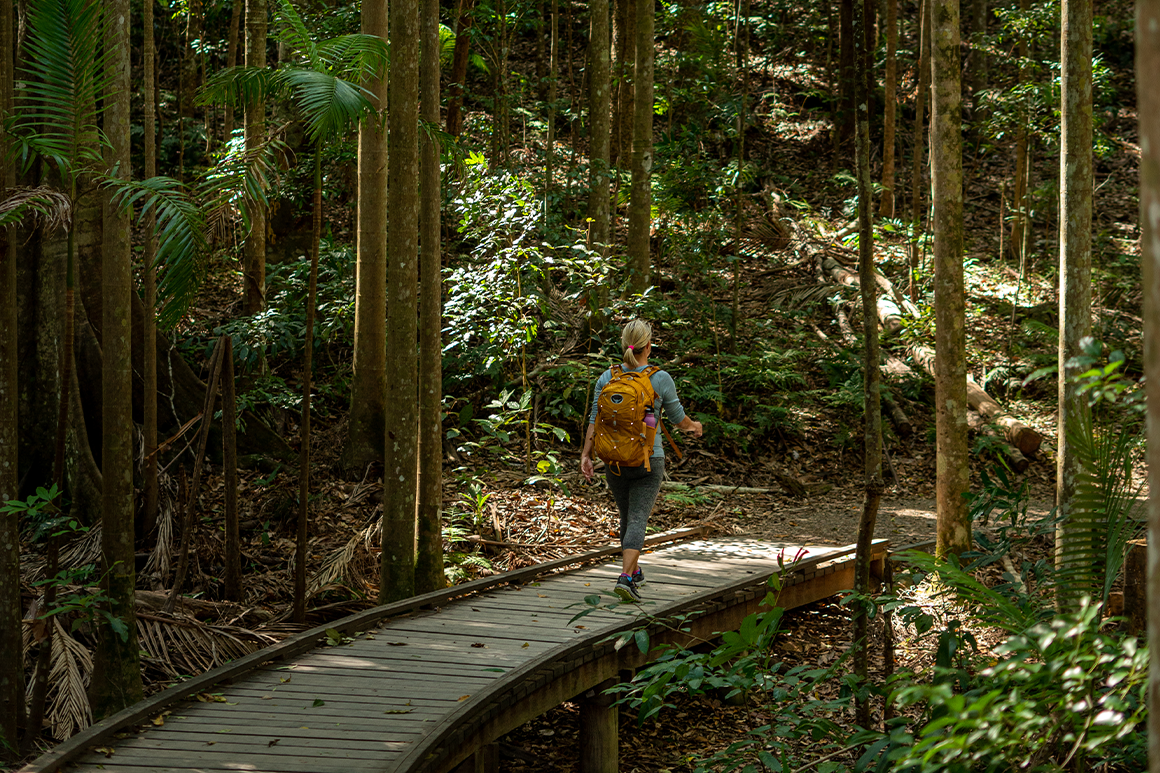 Hiker wearing a yellow backpack is walking across a wooden bridge surrounded by rainforest vegetation.
