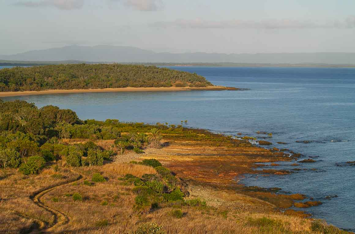 View from a high vantage point over forested and grassy coastline that curves around to meet the blue ocean