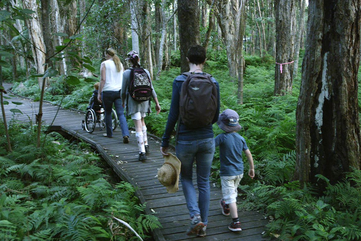 Two women and three young children, one in a wheelchair, are moving along a wooden walking trail surrounded by low ferns and eucalypts.
