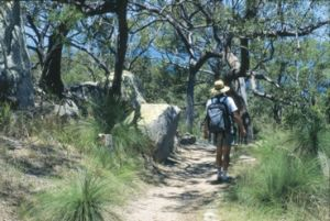 Image of someone walking on Magnetic Island with a backpack.