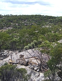 Views of the park from the Burra Range lookout.