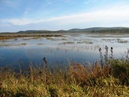 Image of Camp near Emu Swamp dam. Photo: Eleanor Collins, Queensland Government.