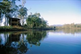 Hasties Swamp National Park, Queensland. Photo: Tourism Queensland.