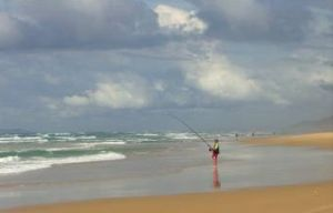 Enjoy fishing on Teewah Beach. Be aware of recreational fishing rules and stay well out of traffic lanes. Photo: Queensland Government