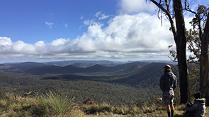 Take in panoramic views to the park's north-west from Top Shelter Shed. Photo: Linda Thompson © Queensland Government