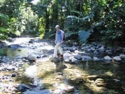 Creek crossing, Goldfield trail.