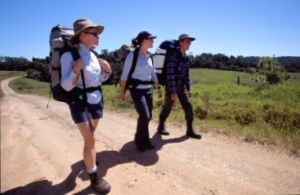 Prepare for a safe and enjoyable walk. Photo: Queensland Government