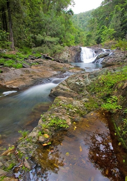 Artists Cascades can be visited on one of the area's short walks. Photo: Robert Ashdown, Queensland Government.