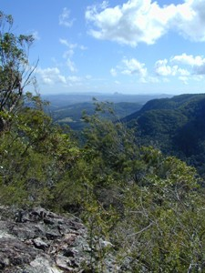 View from Thilba Thalba viewpoint. Photo: Queensland Government