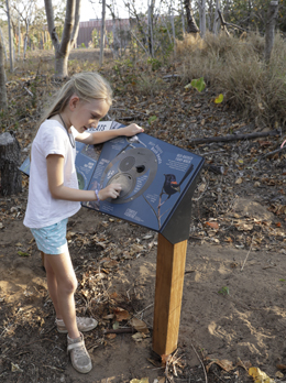 Stop and look at the interactive interpretive signs on pathways around the Turtle Centre to learn more about local wildlife. Photo: Queensland Government.