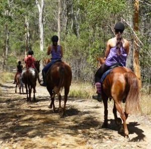 Horseriding is a great way to experience Nerang's shared trails. Photo: Kim Morris, Queensland Government.