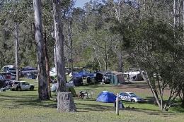 Peak times mean peak crowds at Peach Trees camping area. Photo: Ross Naumann, QPWS volunteer.