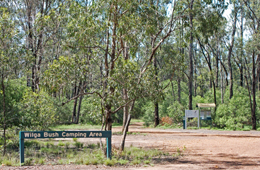 Wilga bush camping area offers secluded camp sites.