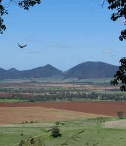 Image of the view of the surrounding farmland with Mount Walla in the distance.