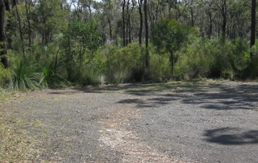 Two vehicle-based camping areas are found next to the car park area. Photo: Justin O'Connell, Queensland Government.