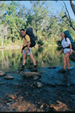 Image of walkers crossing a creek. There are a number of creek crossings along the Wet Tropics Great Walk.