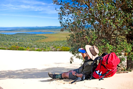 When walking across the Cooloola Sandpatch, observe signage and stay within defined areas to minimise your impact. Sandblows scar easily.