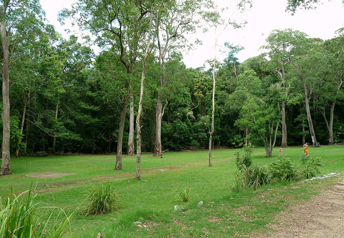 Green grassy open space fringed by rainforest with kids in bright clothes playing in background