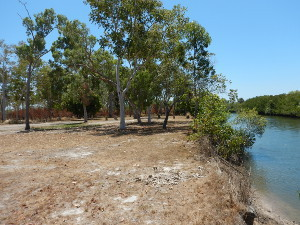 Camping area 1. Photo © Queensland Government