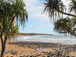 The Mon Repos beach includes rock and shell areas. Protect your feet by wearing shoes suitable for walking in a sandy environment.
