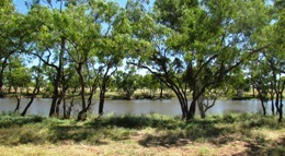 Picnic beside Nowranie Waterhole. Photo: Gary Featonby, Queensland Government.