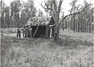 Shepherd's Hut, Robinson Gorge section, Expedition National Park.