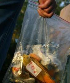 Zip-lock bags are ideal for taking your rubbish home. Photo: Adam Creed, Queensland Government.